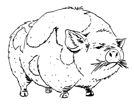 porker: Cartoon image of huge pig Illustration
