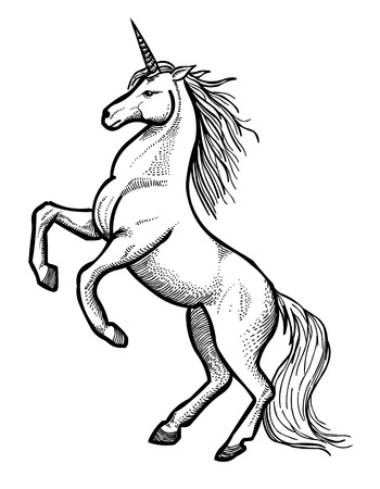 Cartoon image of unicorn Illustration