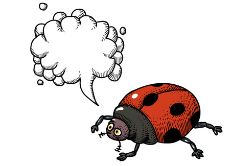 ladybug-100