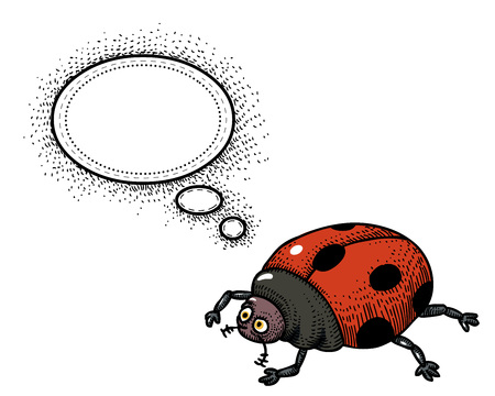 Cartoon image of ladybug. An artistic freehand picture.