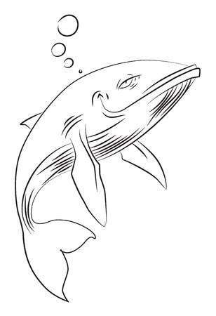 Cartoon afbeelding van happy walvis. Een artistieke afbeelding uit de vrije hand.