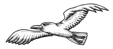 Cartoon image of seagull