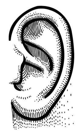 Cartoon image of human ear Illustration