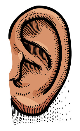Cartoon image of human ear Illustration