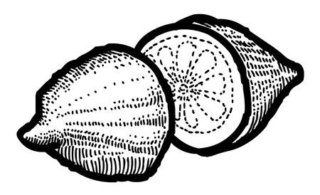 lemon wedge: Cartoon image of Lemon Icon. Fruit symbol Illustration