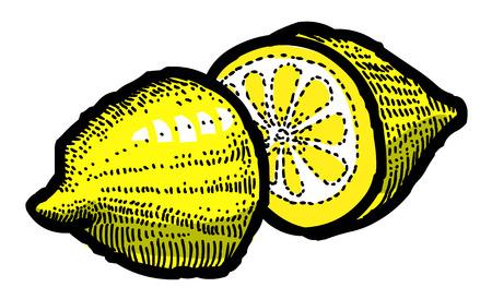 Karikaturbild der Zitronen-Ikone. Fruchtsymbol