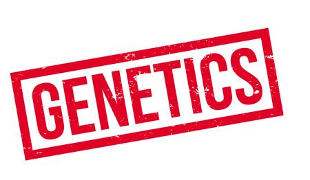 embryology: Genetics rubber stamp