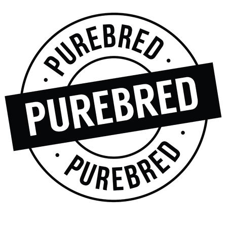 purebred stamp on white