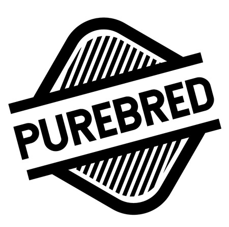 purebred stamp on white background . Sign, label sticker