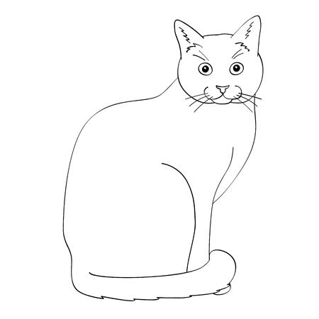 Cat flat illustration on white background. Hike, travel and lifestyle series. Illustration