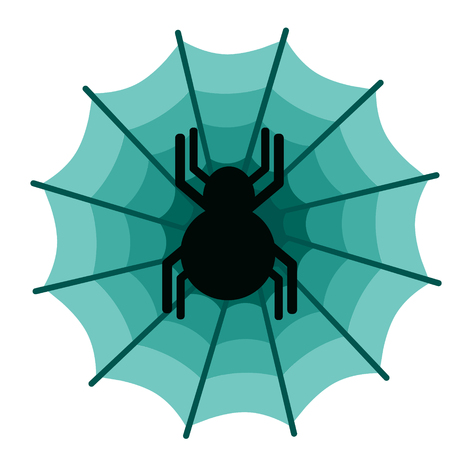Spider flat illustration on white background. Animals and wildlife series.