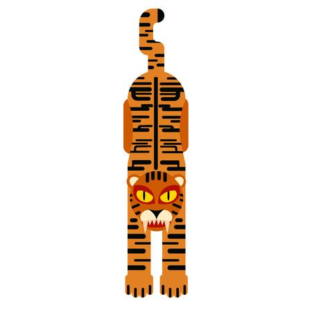 Tiger flat illustration on white background. Animals and wildlife series.
