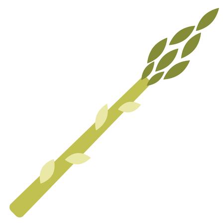 Illustration plate d'asperges sur blanc. Cuisine à la maison et série d'objets alimentaires.