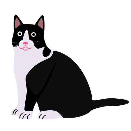 Black and white cat flat illustration on white. Home, lifestyle and fashion objects series.