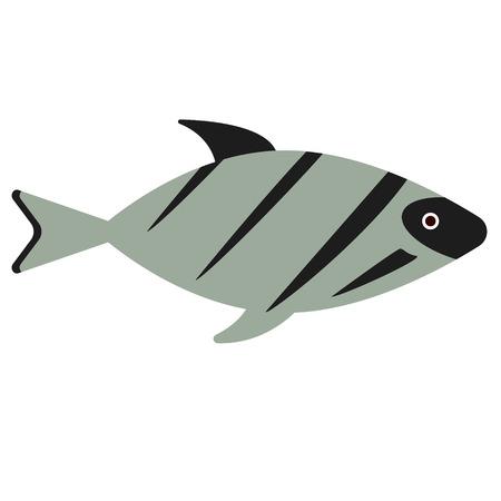 fish flat illustration on white. Marine and underwater world series. Ilustrace