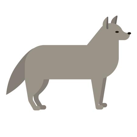 wolf flat illustration on white 일러스트