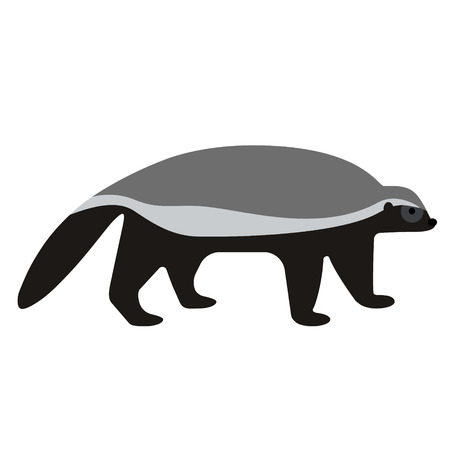 badger flat illustration on white. Animals and wild life series. Illustration