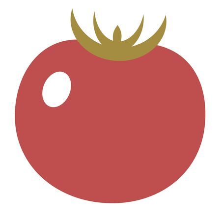 Tomato flat illustration on white