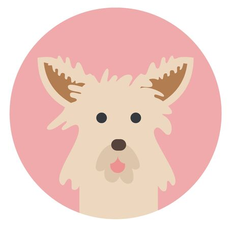 cairn terrier , illustration on white background flat style