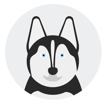 husky , illustration on white background flat style
