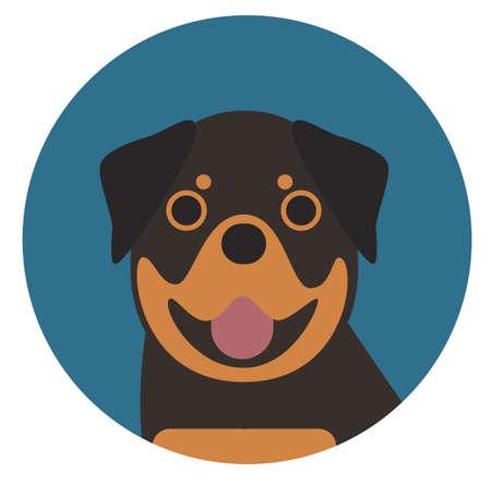rottweiler , illustration on white background flat style