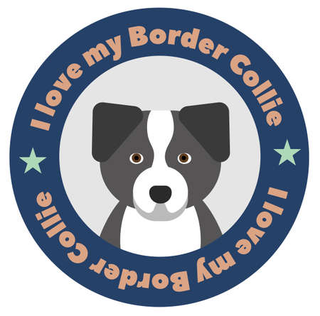 I love my border collie , illustration on white background