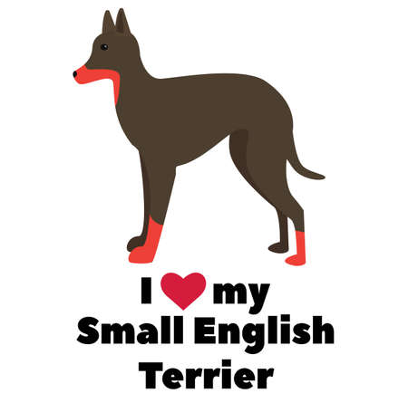 I love my small english terrier , illustration on white background Ilustração