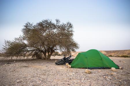 roughing: Green tent near tree in morning. Israel desert Negev.