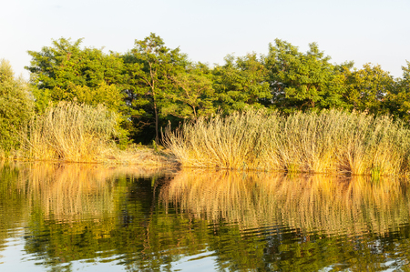 Reflection in the Holt Koros River near Szarvas in Hungary Stock Photo