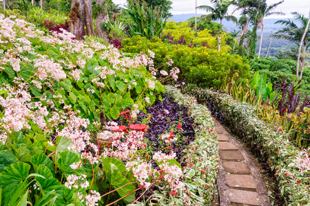 Little path between the flower beds in The Summit Gardens - Port Vila, Efate Island, Vanuatu Stock Photo