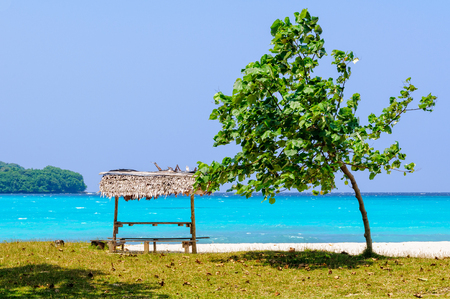 A tree and a table with bench under a leaf beach bungalow at Olry Bay - Espiritu Santo, Vanuatu Stock Photo