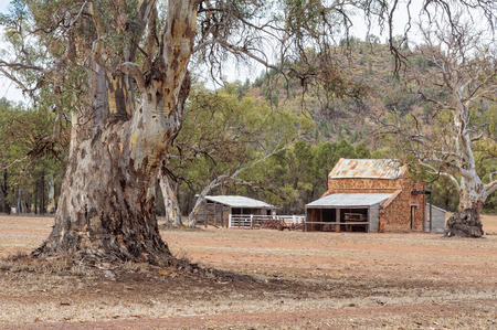 Early station buildings in an authentic pastoral landscape at  Wilpena Pound - Flinders Ranges, SA, Australia