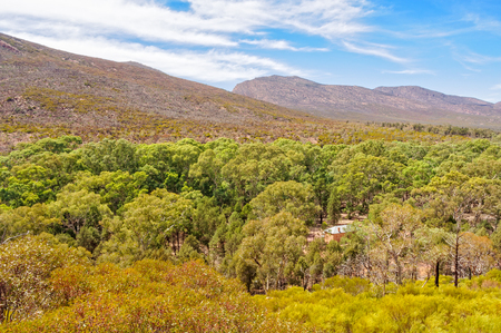 View from above Hills Homestead in the Flinders Ranges - Wilpena Pound, SA, Australia