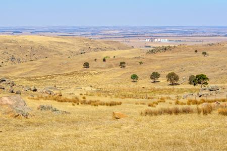 Steep, dry and rocky pasture between Angaston and Murray Bridge - SA, Australia