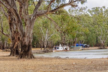 Barmah National Park in de buurt van Echuca is een geweldige plek om te kamperen - Barmah, Victoria, Australië Redactioneel
