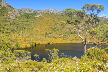 Lake Lilla in the Cradle Mountain-Lake St Clair National Park - Tasmania, Australia