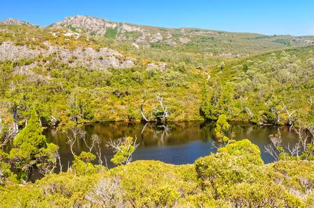 Wombat Pool es una joya de fácil acceso del Parque Nacional Cradle Mountain-Lake St Clair - Tasmania, Australia