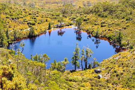 Wombat Pool en el Parque Nacional Cradle Mountain-Lake St Clair - Tasmania, Australia