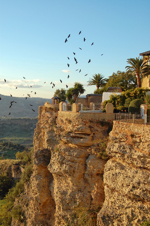 Birds above the cliffs of the El Tajo Gorge - Ronda, Andalusia, Spain
