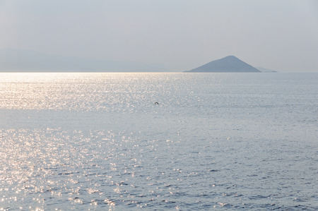 A lonely bird is chasing the sun over the Aegean Sea - Saronic Gulf, Greece 스톡 콘텐츠