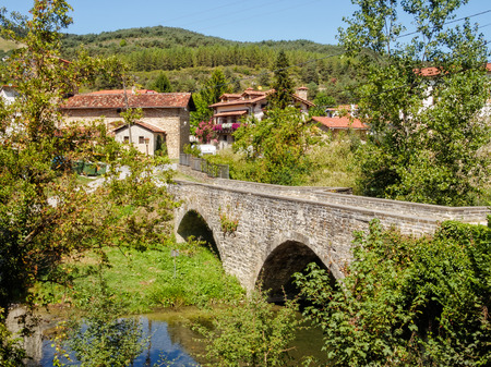Medieval bridge over the Arga River - Larrasoana, Navarre, Spain 写真素材