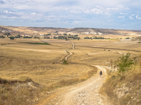 Pilgrims walk across the Meseta (central plateau) towards Hornillos del Camino - Castile and Leon, Spain Фото со стока