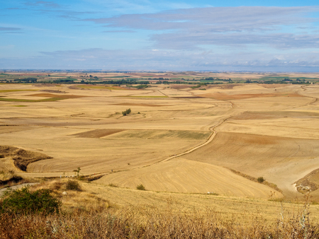 View backward of the valley from Alto Mestelares - Castrojeriz, Castile and Leon, Spain