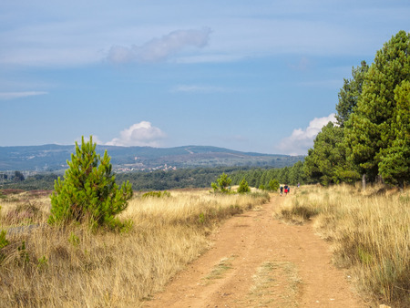 The Camino track approaches the mountains - Rabanal del Camino, Castile and Leon, Spain