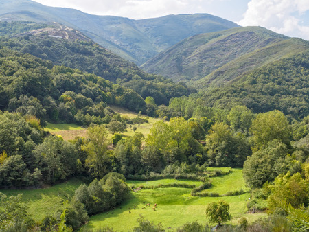 Lush meadow in the valley surrounded by magnificent mountains - Vilasinde, Castile and Leon, Spain