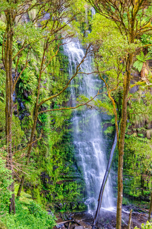 Erskine Falls cascades 30 metres into a beautiful tree fern gully - Lorne, Victoria, Australia