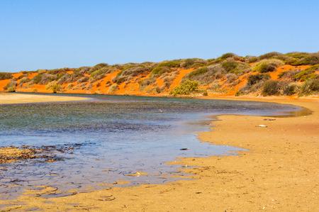 River bend at Little Lagoon  - Denham, WA, Australia