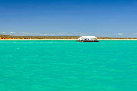 Pontoon floating on the tranquil shallow water of Shark Bay Marine Park - Monkey Mia, WA, Australia