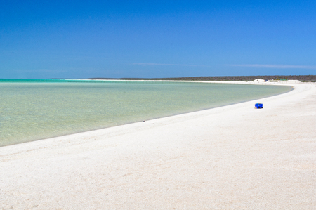 Esky on the beautiful snow-white Shell Beach made up of millions of tiny shells - Denham, WA, Australia 写真素材