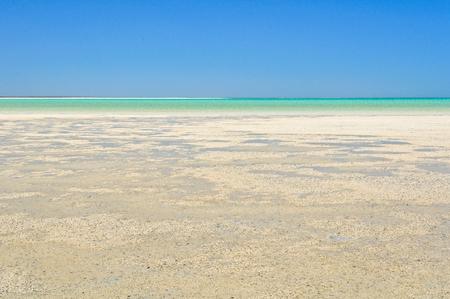 Low tide at Shell Beach - Denham, WA, Australia 写真素材